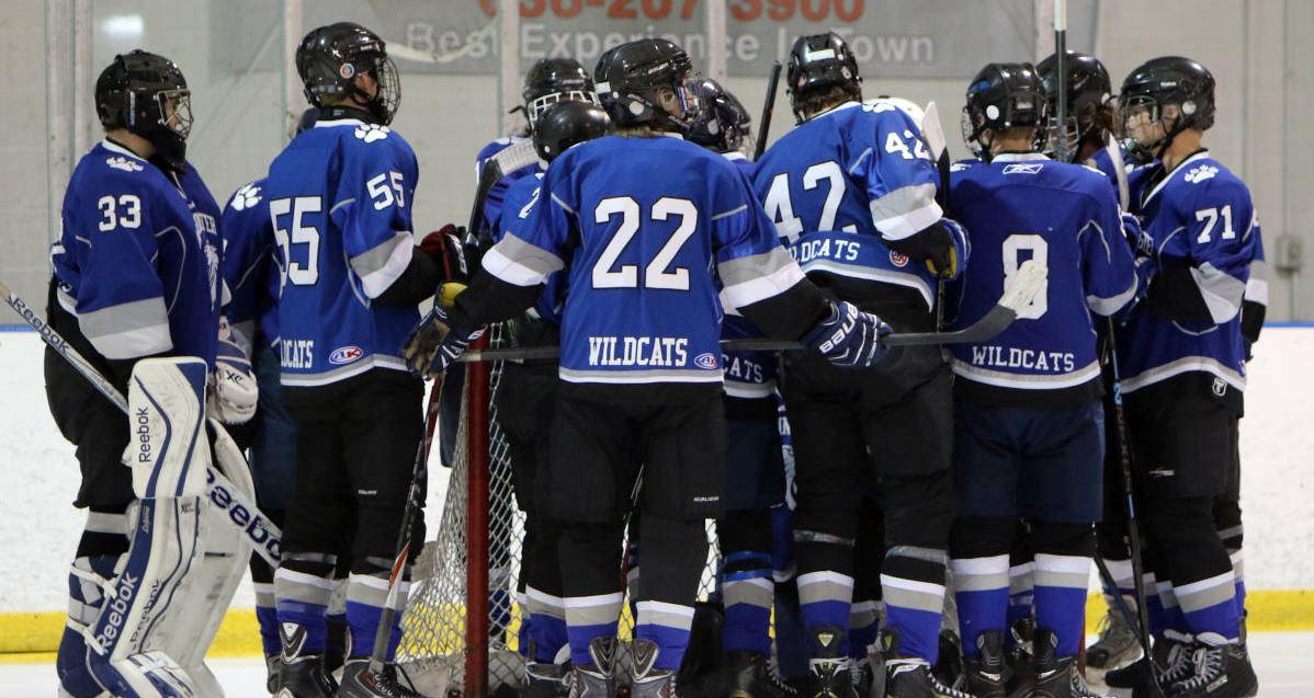 HockeyAtGoal